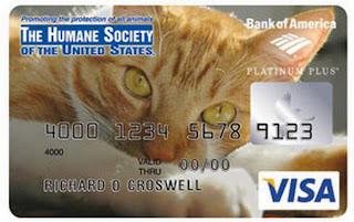 Bank of America Credit Card Design