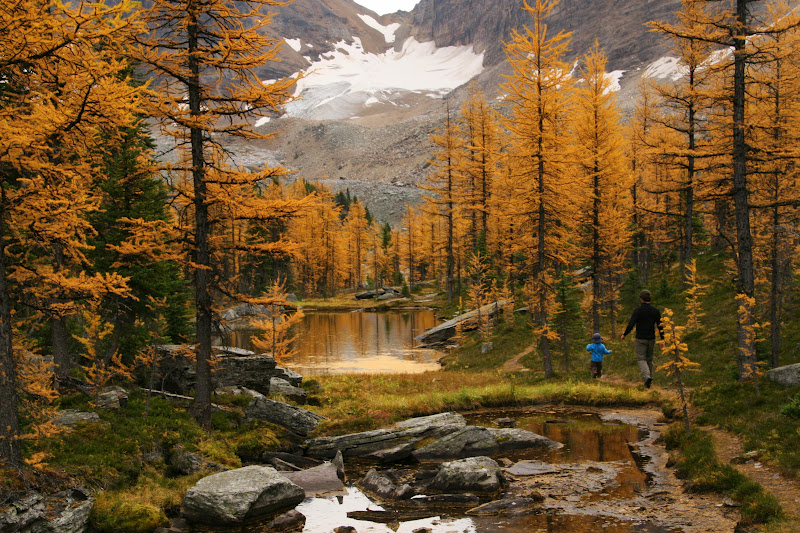 Canadian Rockies: The Best Autumn Day Hikes in the Canadian Rockies