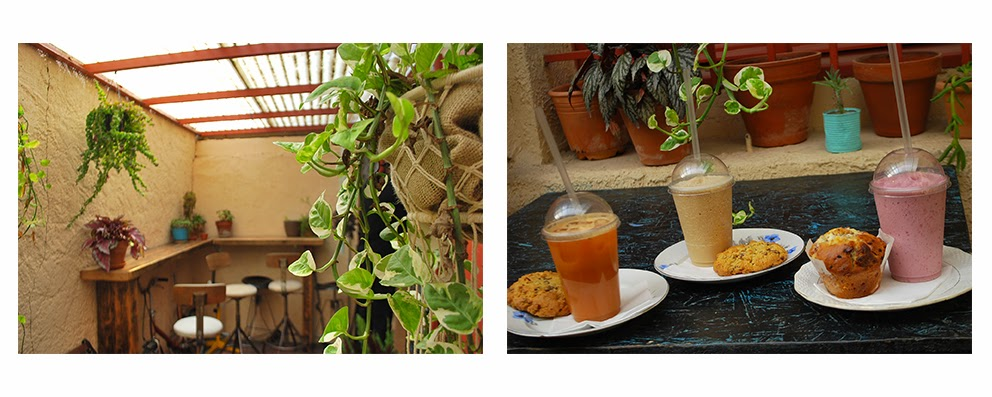 décoration du coogee, véranda fumeur, frappé, cookies, muffin