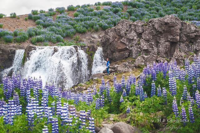 Wodospad islandzki