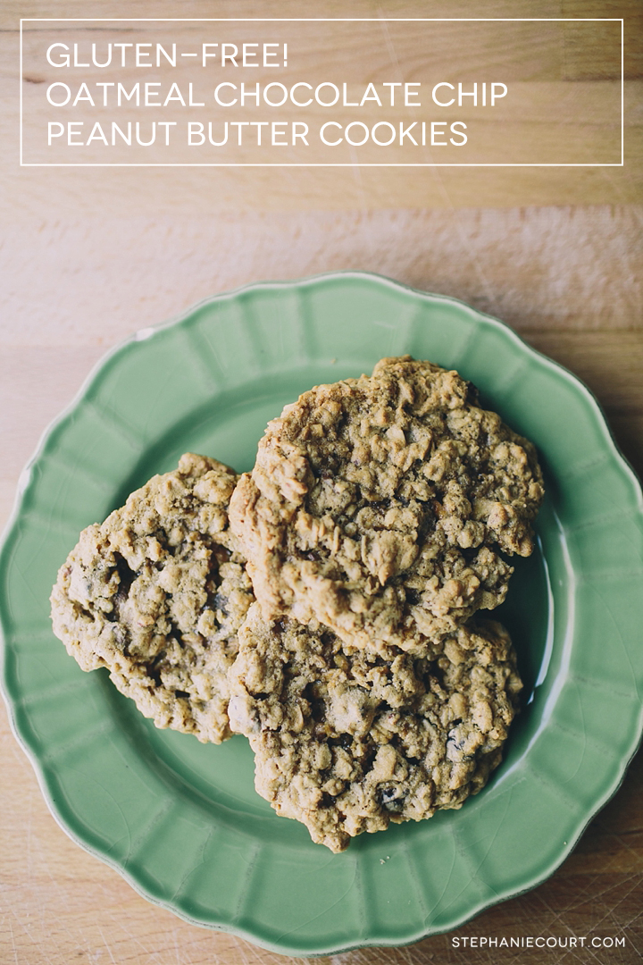 gluten free oatmeal chocolate chip peanut butter cookies