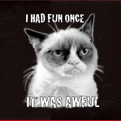 Grumpy Cat I Had Fun OnceAngry Cat Meme I Had Fun Once