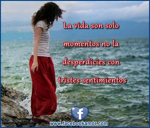 REFLEXIONES..... La+vida++esta+hecha+de+momentos