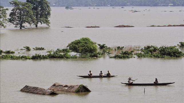 INDIA: LAS LLUVIAS DEL MONZON CAUSAN INUNDACIONES EXTREMAS EN ODISHA, 12 de agosto 2014