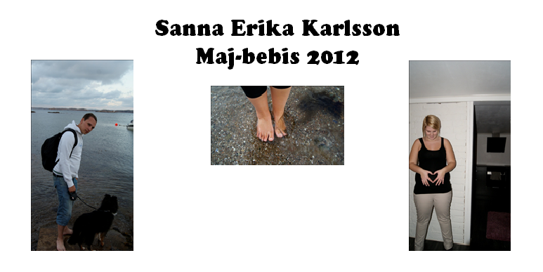 Sanna Erika Karlsson