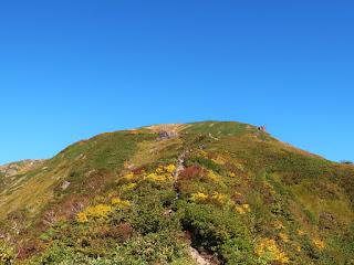 色づき始めた山頂付近