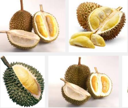 Cara Mudah Untuk Memilih Durian yang Rasanya Enak