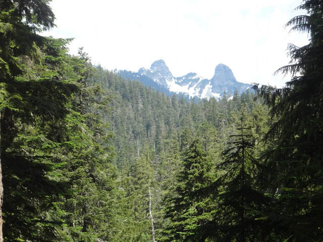 View of the Lions from Howe Sound Crest Trail