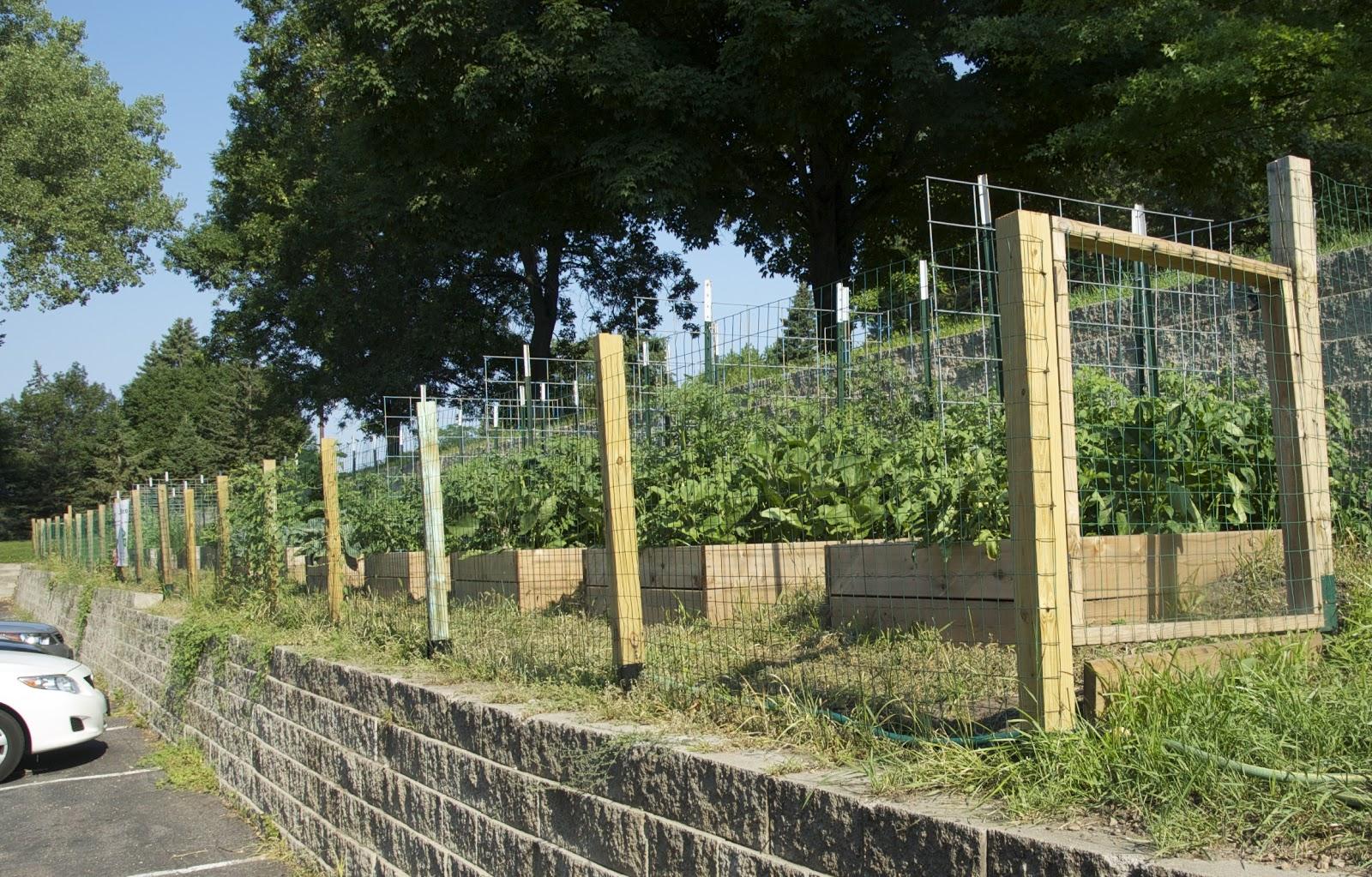 Savoring Servant State Funding For Community Gardening