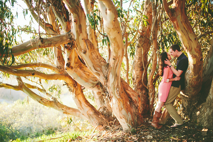intimate wedding photography, kissing tree, natural bridges state beach santa cruz
