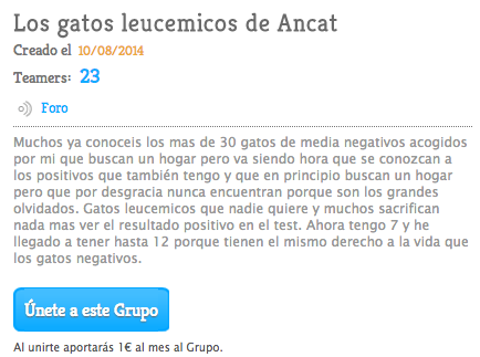 Teaming Gatos con Leucemia - ayuda con 1€/ mes
