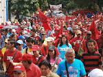 CAMPANHA DE CHAVEZ 2013