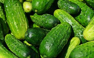 Los pepinos son un vegetal ideal para perder peso