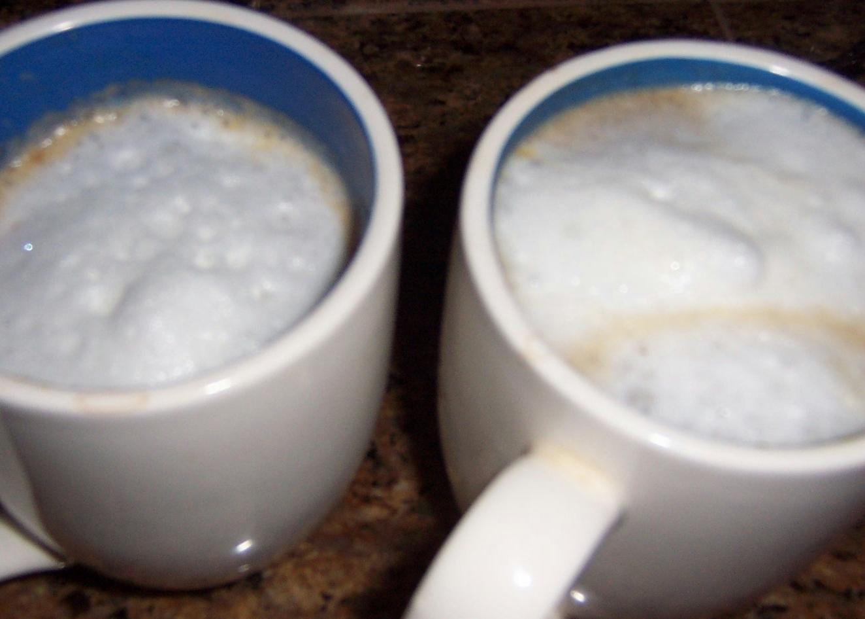 bodum milk frother instructions