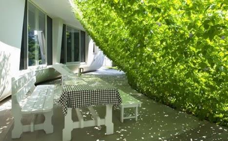 Green House แบบบ้านสีเขียว จิตสำนึกแห่งการอนุรักษ์