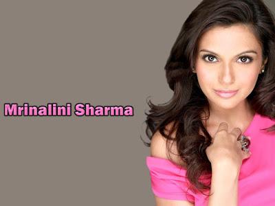 Mrinalini Sharma sexy picture