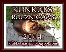 http://klubkotajasna8.blogspot.com/2014/06/konkurs-rocznicowy-2014.html#more