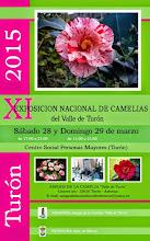 XI Exposición de Camelias del Valle de Turón. 28 y 29 de marzo.
