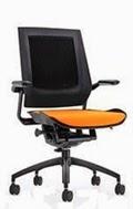 Eurotech Bodyflex Chair