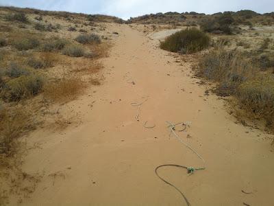 Cuerda suelta sobre la arena