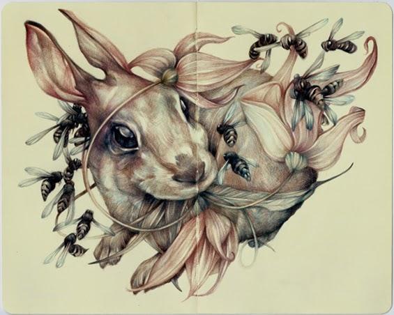 marco-mazzoni-illustrazioni-conigli