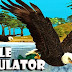 Download Eagle Bird Simulator v1.0 APK Full