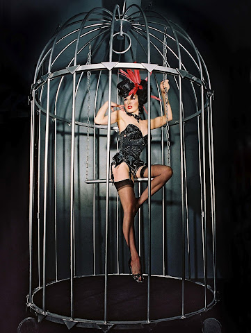 Dita von Teese pin up burlesque