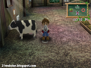 Screenshots Harvest Moon A Wonderful life
