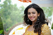 Rakul Preeth Singh at Pandaga Chesko Launch-thumbnail-2