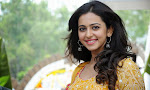 Rakul Preeth Singh at Pandaga Chesko Launch-thumbnail