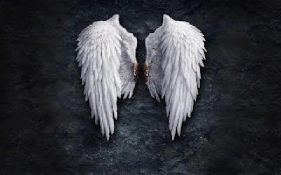 Hal-Hal yang Dibenci Para Malaikat