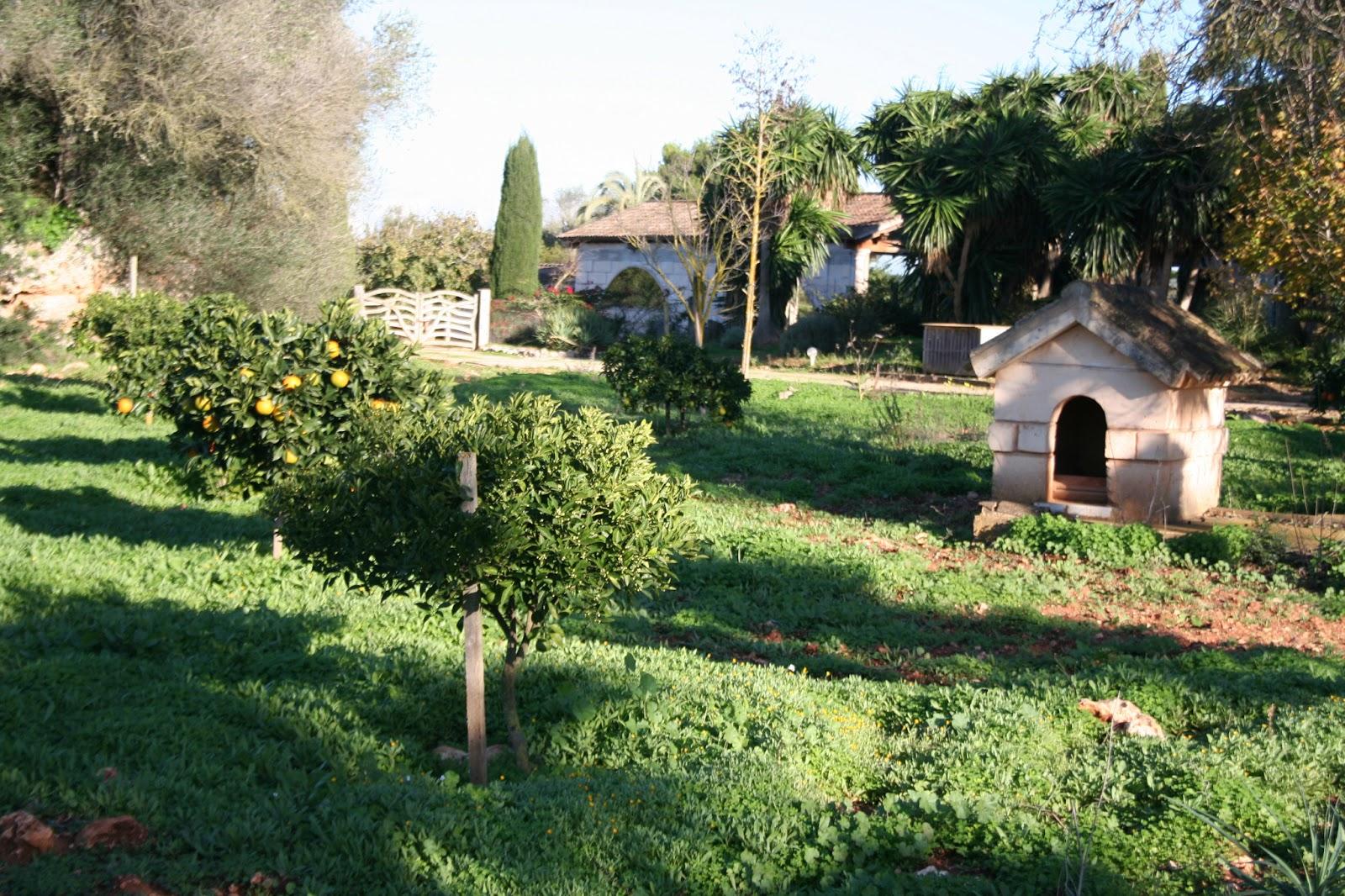 Jardines y huerta for Piscina huerta de lara