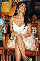 Hot, shriya, saran, latest, cleavage, show, images
