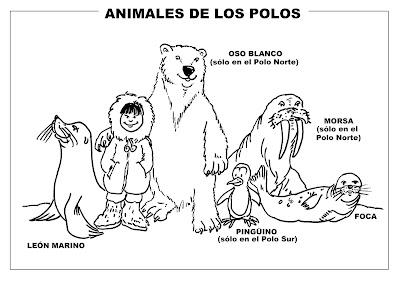 El Monstruito en Monteagudo: Proyecto Los Polos (I)