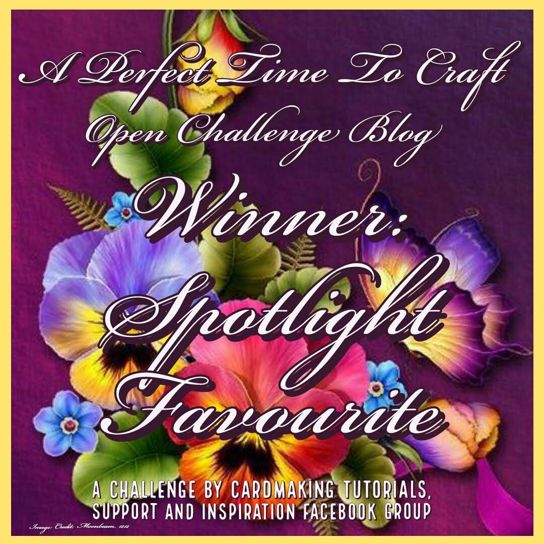 i won spotlight