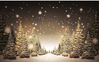 Snow Christmas Wallpapers