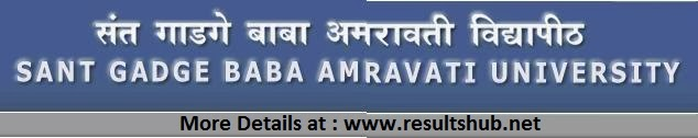 SGBAU BCA Part 3 Winter 2013 Result Amravati University