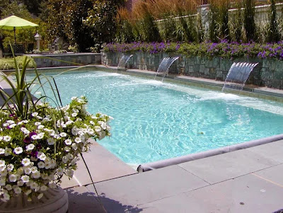 keep pool clean and healthy