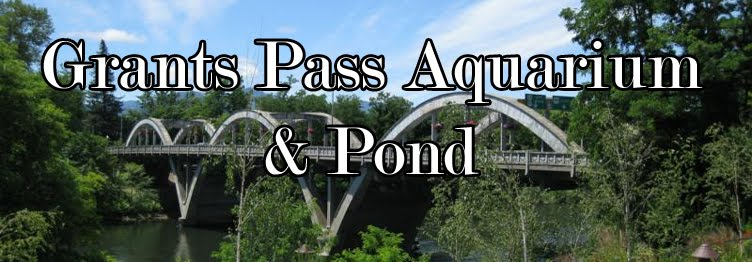 Grants Pass Oregon Aquarium & Pond