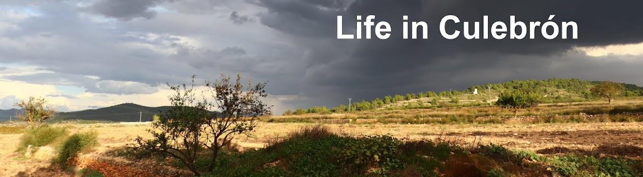 Life in Culebrón
