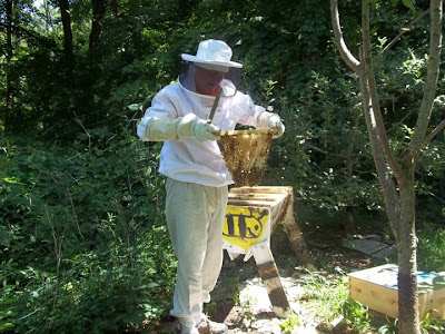 beekeeping