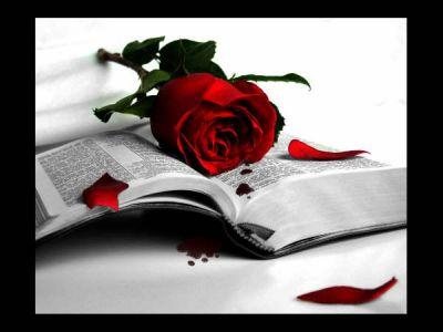 Poesia - Expoente do Pensamento