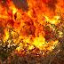 Υψηλός ο κίνδυνος πυρκαγιάς σε Αιγαίο και Κρήτη προειδοποιεί η Πολιτική Προστασία