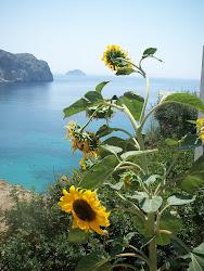 Illa de Quios (Grècia)