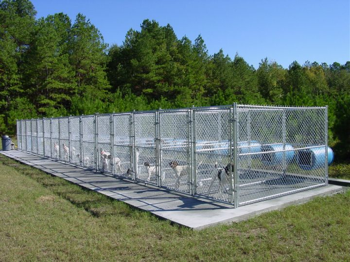 kennel2bs2b6 similiar gun dog kennel ideas keywords on similiar dog kennel blueprints - Dog Kennel Design Ideas