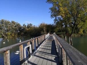 Treviso: città sull'acqua
