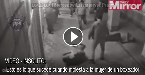 VIDEO INSOLITO - Esto es lo que sucede cuando molesta a la mujer de un boxeador