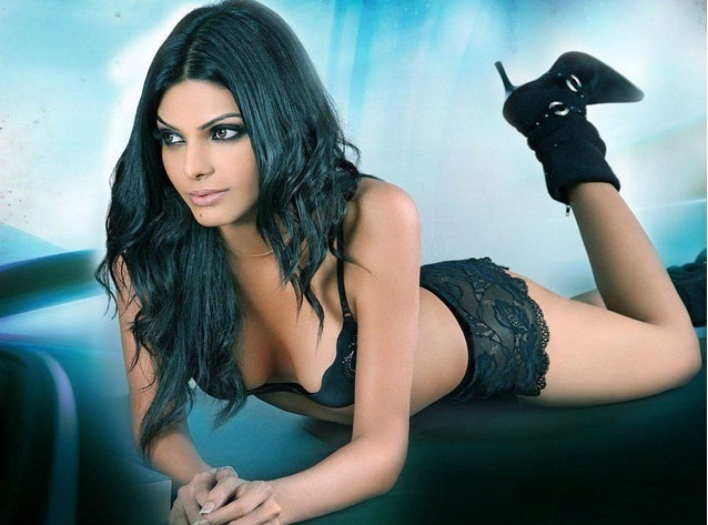 hot images of sherlyn chopra,pics of sherlyn chopra,sherlyn chopra photos,sherlyn chopra pics