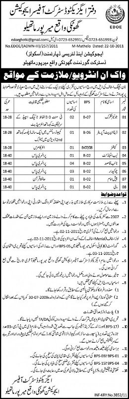 District Officer Education Mirpur Mathelo Jobs