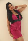 Madhavi Latha new glamorous photos-thumbnail-7